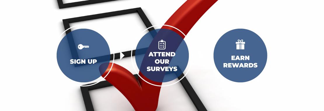 Zippy Opinion, Paid surveys, earn through surveys