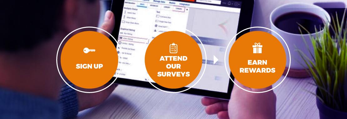 Zippy Opinion, Paid Surveys